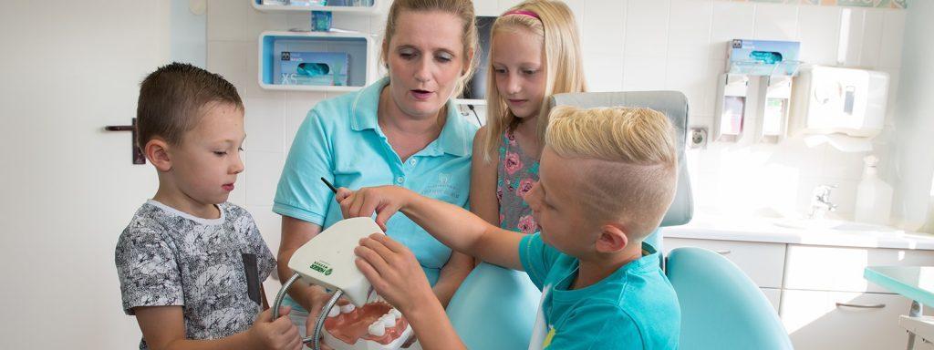 zahnarztpraxis-stefanie-wilhelm-schwerpunkte-kinderzahlheilkunde-min-1-1024x384